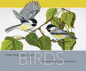For the Love of Birds | Jane Beasley